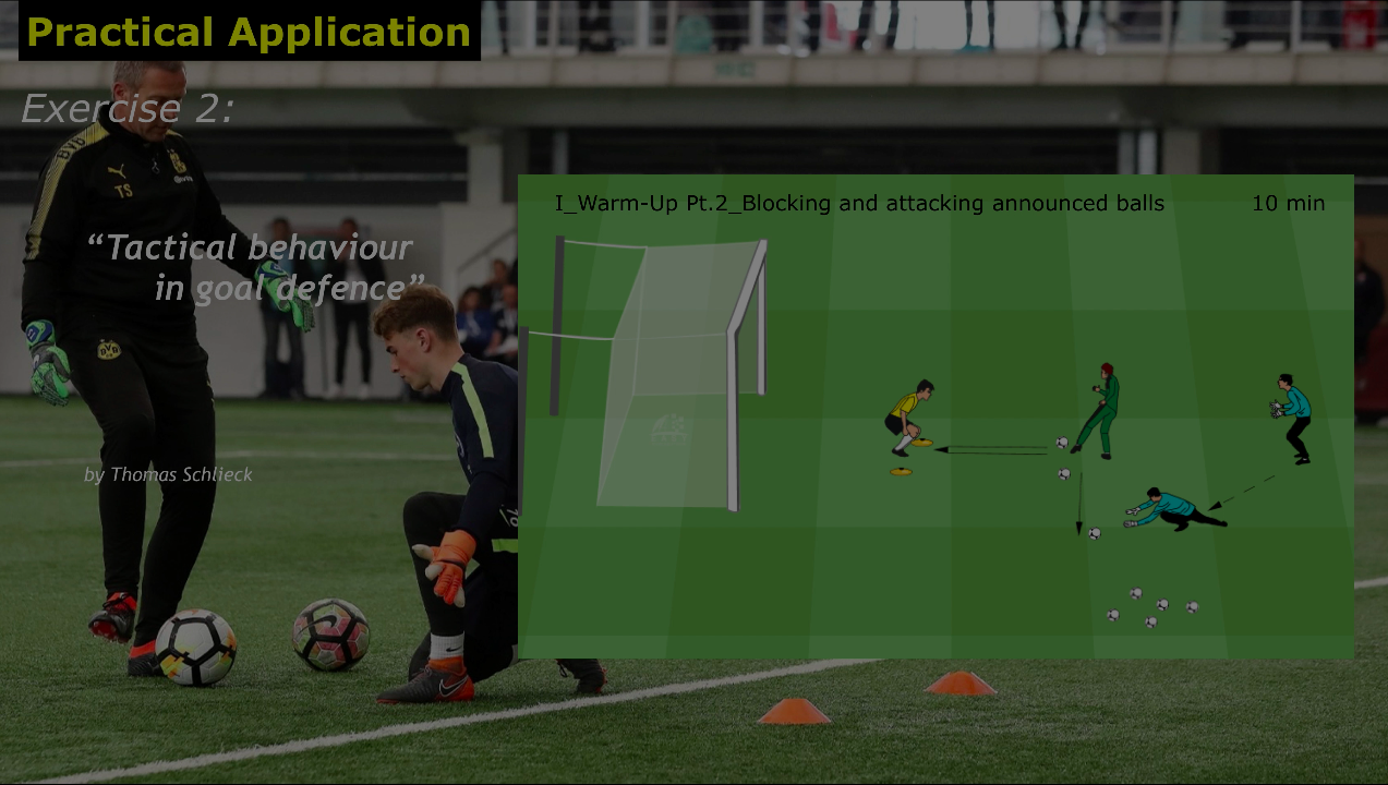 Tactical behaviour in goal defence, by Thomas Schlieck